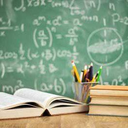 akademik-profesyonel