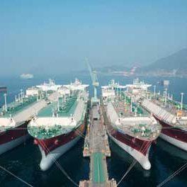 Norveççe denizcilik sektörü çevirisi