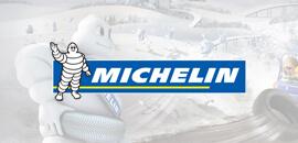 michelin logosu